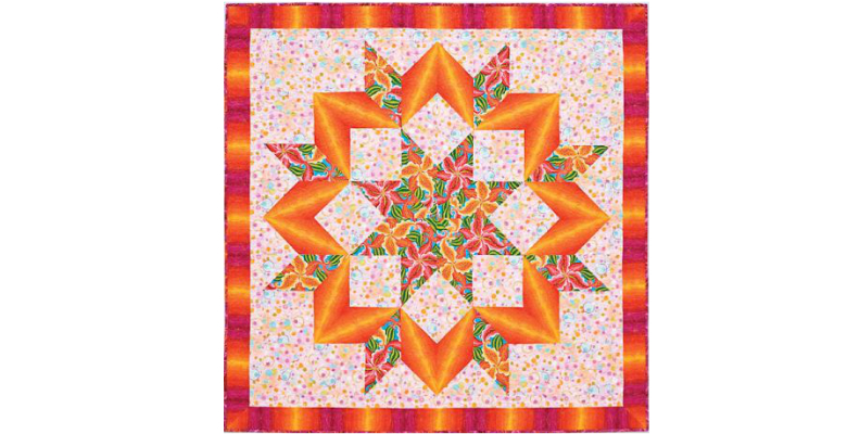 jan krentz star quilt workshop